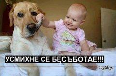 Бебто и кучето