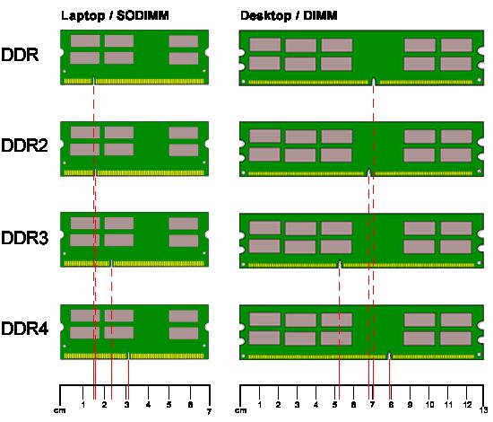 memory-module-diagram.png